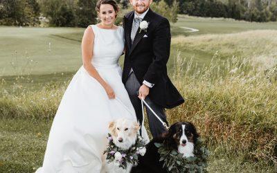 Including Pets in Wedding Ceremonies